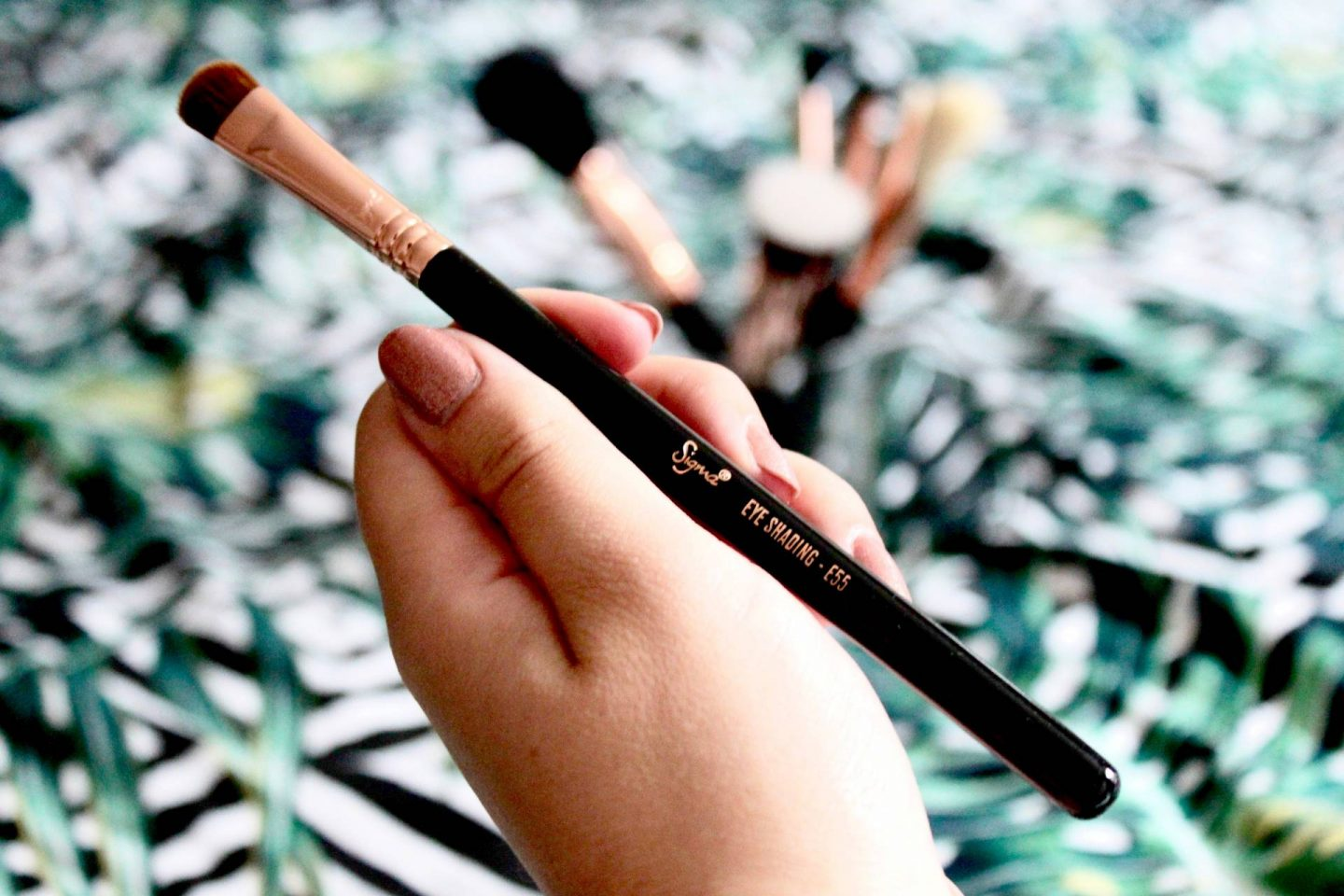 E55 sigma Eye Shading Brush