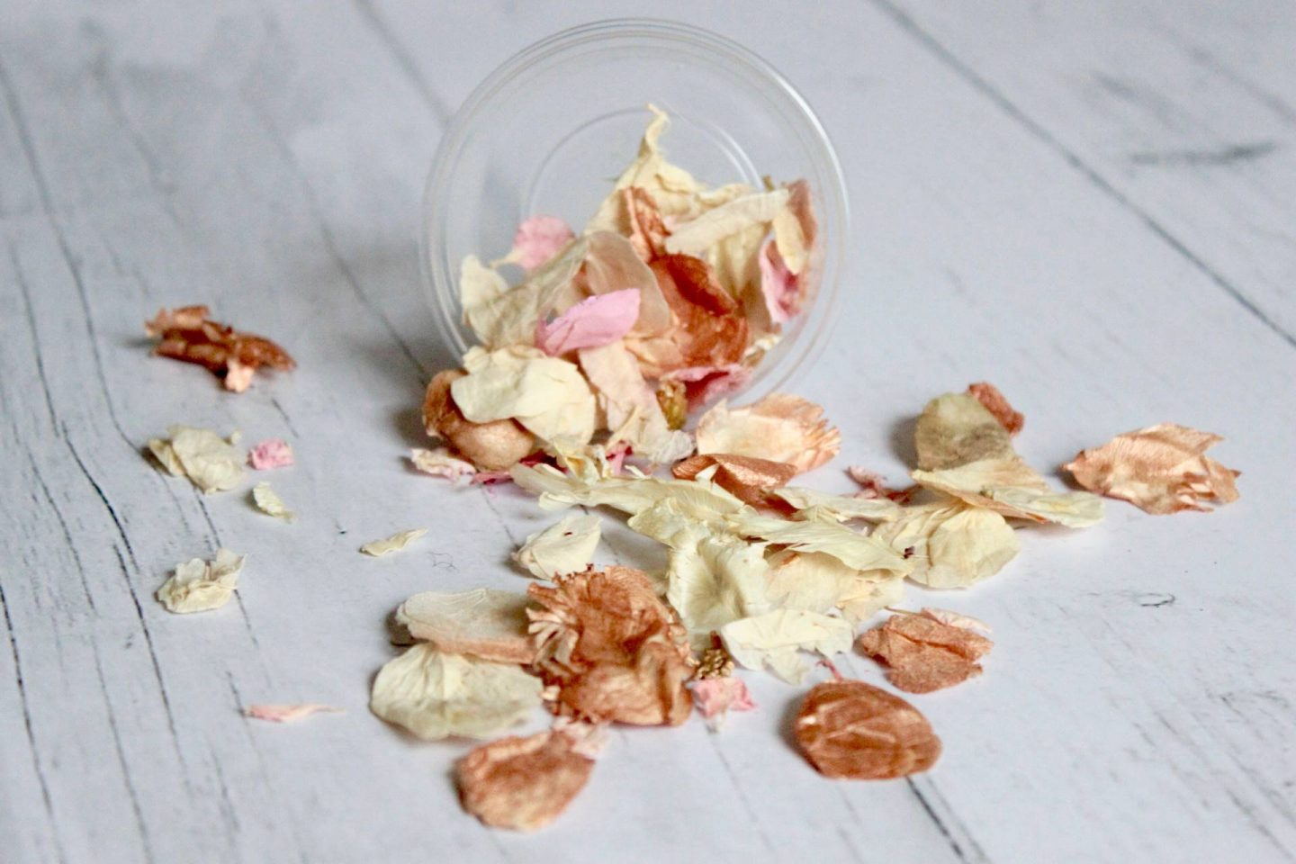dried petals photography prop